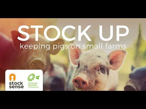FULL WEBINAR - STOCK UP: Keeping Pigs On Small Farms -