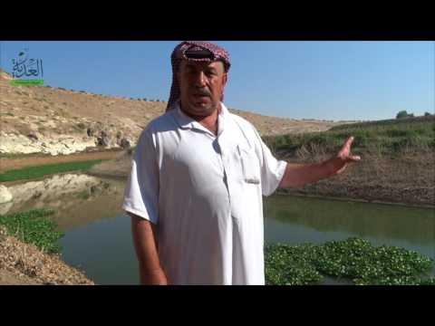 الثروة الحيوانية ومحاصيل ريف حماه مهددة بالإنهيار بعد حبس نظام الأسد لمياه حوض العاصي