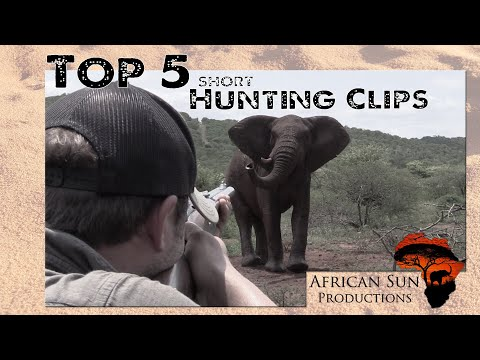Top 5 short hunting clips filmed with H&J Safaris.