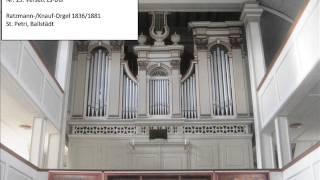 Michael Henkel: 20 Orgelstücke op. 23 / Teil 2
