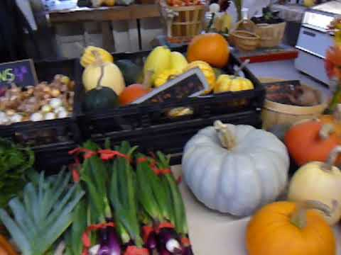 Organic North End Farm Stand on Salt Spring Island