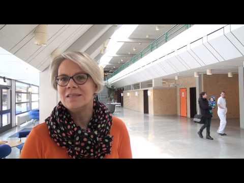 Om arbejdet med Den Danske Kvalitetsmodel i 2013