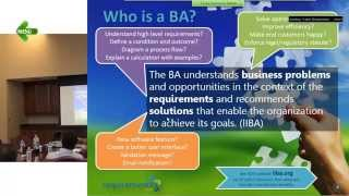 [Part 1/6] Business Analyst Training for Beginners - Basics. Reach Sri on Whatsapp at 716-228-2'411