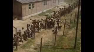 Escape from Sobibor (escape scene)