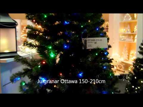 Star Trading Ottawa
