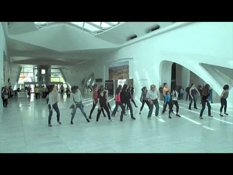 Marissa + Taylor's Marriage Proposal Flash Mob at the Milwaukee Art Museum