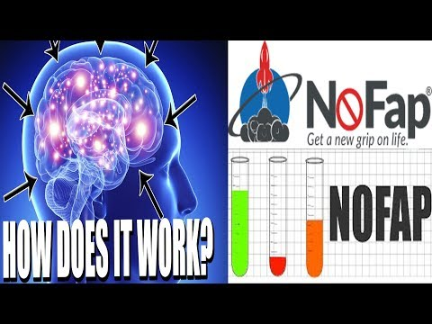 The SCIENCE Behind NOFAP