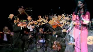 Michigan Arab Orchestra -