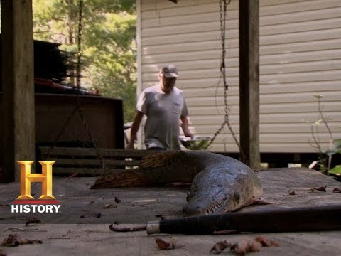 Swamp People: Junior And Theresa Catch A Garfish | History