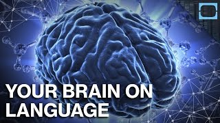 How Does Language Change Your Brain?