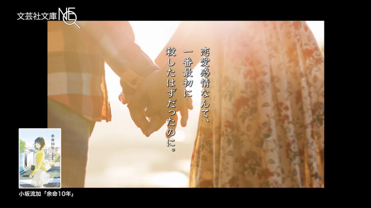 出版社様【動画広告】movie