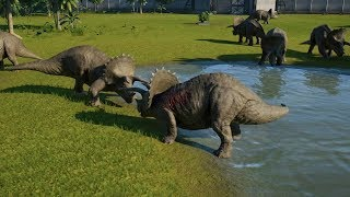 Triceratops VS Triceratops Jurassic World Evolution 100% Genome Gen...