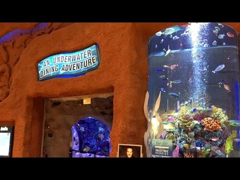 Opry Mills Aquarium Restaurant | Nashville Tennessee | 200,000 Gallon Salt Water Aquarium