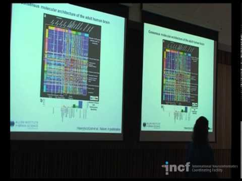 Angela Bongaarts - Gene expression data mining II