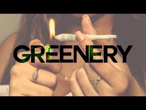 "Free Isaiah Rashad Type Beat ""Greenery"" | mjNichols"