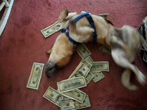 Pictures Of Women Rolling In Money Big Teenage Dicks