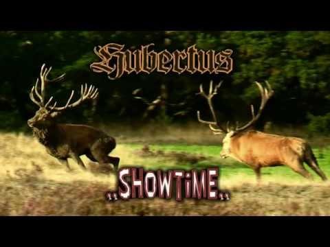 Hert/ Deer Hubertus Showtime, Nat. Park de Hoge veluwe