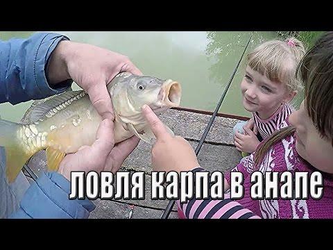 анапа рыбалка на прудах
