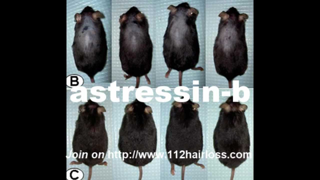 Astressin-b peptide