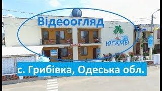 Югами - база відпочинку в Грибовці, Одеська область - 1 лінія моря.