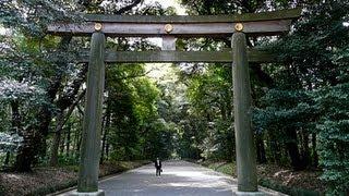 Meiji Jingu - Shinto Temple in Tokyo Japan