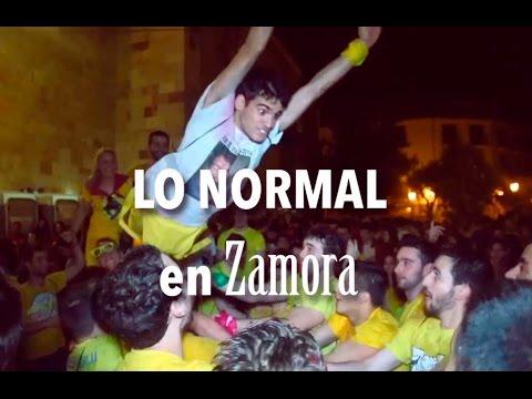 Lo Normal en Zamora (Zamora Fiesta SAN PEDRO)