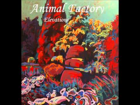 Animal Factory - Elevations (2012)