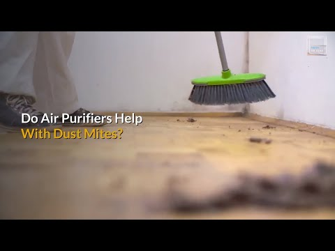 do-air-purifiers-help-with-dust-mites?-5-tips-to-kill-dust-mites-fast.