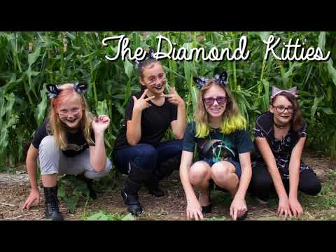 Girls Rock Camp Carbondale 2017