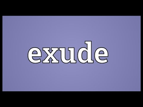 Exude Meaning