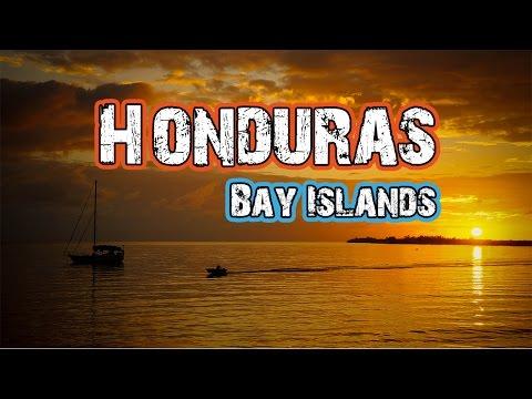 Hasta Alaska - Scuba Utila, Honduras - S03E04