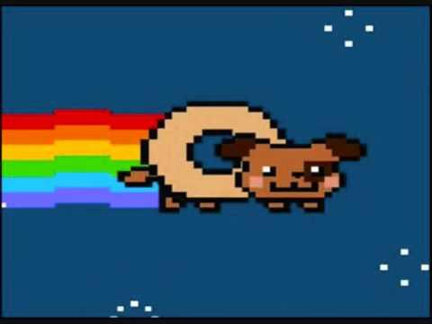 Nyan Cat, Lego, Nyan dog, Bardo, Real Life - YouTube Nyan Dog