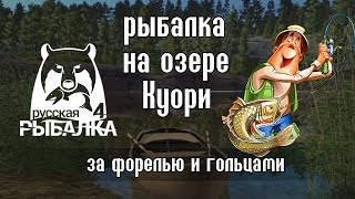 Рыбалка на озере Куори - Русская Рыбалка 4 / Russian Fishing 4