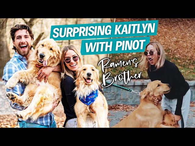 SURPRISING My Girlfriend with Pinot! Our New Puppy! | Jason Tartick