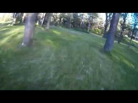 trying to fly faster in the trees - Edmonton Callaghan Blackmud Creek