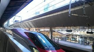 東北新幹線 やまびこ213号 仙台行き E6系とE5系 2019.06.16