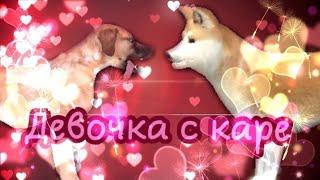 """Клип """"Девочка с каре"""" • Dog Sim (Ч. О.)"""