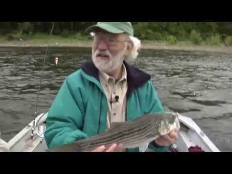 Striper Fishing On The Delaware River