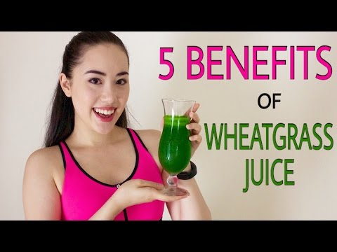 🌿 WHEATGRASS, THE MIRACLE SUPERFOOD + Why We All Need To Drink Wheatgrass Juice Daily ☀️