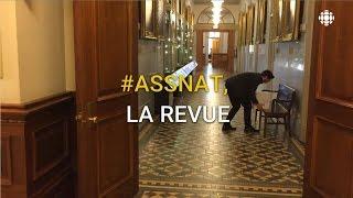 #assnat, la revue : va-t-elle aboutir la réforme de la gouvernance en éducation?