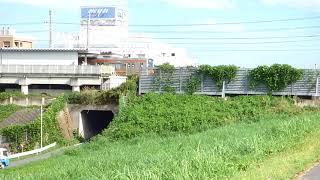 ヒガンバナと武蔵野線・江戸川鉄橋を撮影しました。