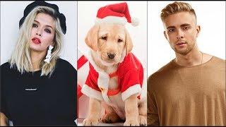 Знаменитости родившиеся в год собаки