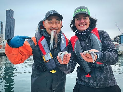 Uncut Puget Sound Squid Fishing With Captain Paul Kim🦑