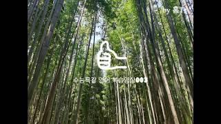 홍T의 고3 수능특강 영어 원격수업용 수업자료 003