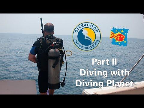 part-ii---eco-dive-near-islas-del-rosario-in-cartagena,-colombia