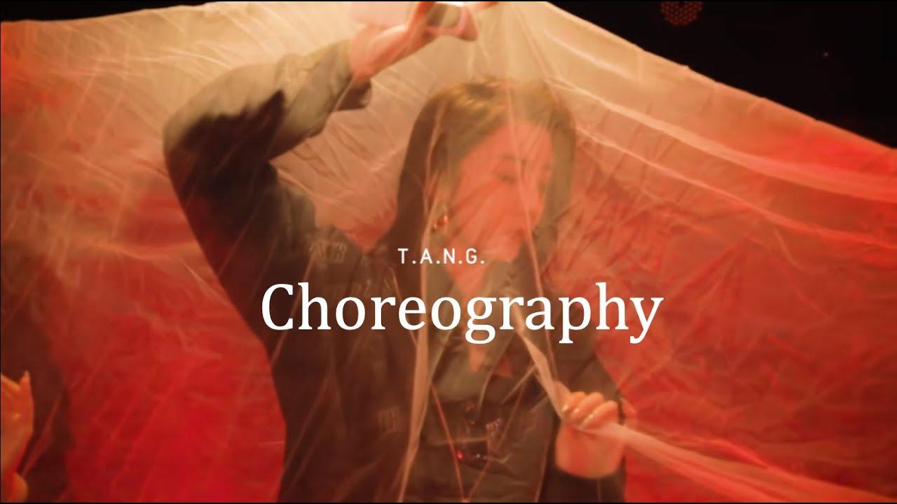 Download [DANCE] THE9趙小棠單曲編舞T.A.N.G XiaoTang Choreography | Matrix