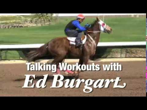 Talking Quarter Horse Gate Works With Los Alamitos' Ed Burgart