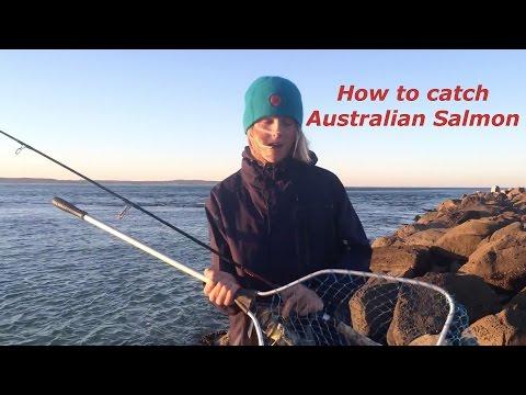 How to catch Australian Salmon