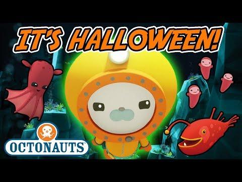 Octonauts -  It's Halloween! | Spooky Glowing Creatures