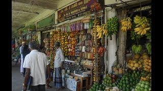 🎥 Kandy Food Market - Food Travel Blog - Sri Lanka Vlog Street Food - Meat Fish Vegetable Markets